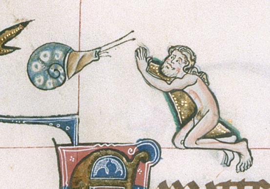 Knight v Snail 2