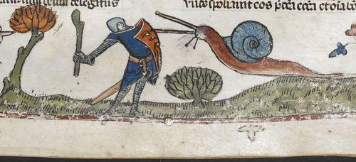 Knight v Snail 3